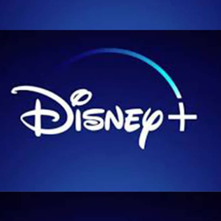 Disney Plus + 2 YEARS + VPN AS A GIFT WARRANTY